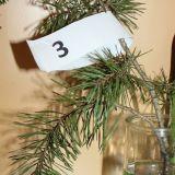Weihnachtsbaum_Rätsel3