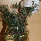 Weihnachtsbaum_Rätsel7